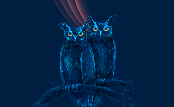 GREAT HORNED OWLS EMBODY ICIS.